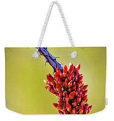 Weekender Tote Bag featuring the photograph Signs Of Life by Rick Furmanek