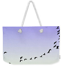 Silhouetted Flight Weekender Tote Bag