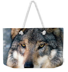 Silly Sancho Weekender Tote Bag by Elaine Malott