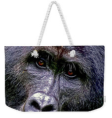 Silverback In The Wild Weekender Tote Bag by Michael Cinnamond