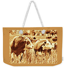 Weekender Tote Bag featuring the photograph Simmental Bull 3 by Larry Campbell