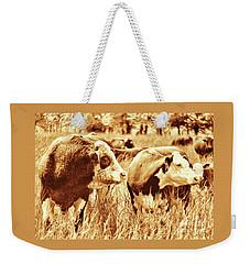 Simmental Bull 3 Weekender Tote Bag