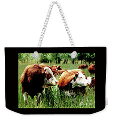 Simmental Bull And Hereford Cow Weekender Tote Bag