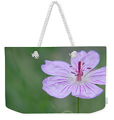 Weekender Tote Bag featuring the photograph Simplicity Of A Flower by Amee Cave