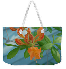 Weekender Tote Bag featuring the photograph Simply Soft Budding Azalea by Aimee L Maher Photography and Art Visit ALMGallerydotcom