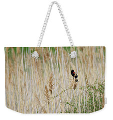 Weekender Tote Bag featuring the photograph Sing For Spring Square by Bill Wakeley