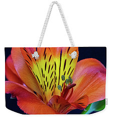 Single Alstroemeria Inca Flower-1 Weekender Tote Bag