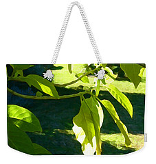 Single Angel's Trumpet Weekender Tote Bag