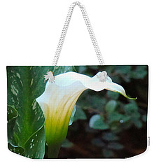 Single Lily  Weekender Tote Bag by Rand Herron
