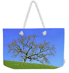 Weekender Tote Bag featuring the photograph Single Oak Tree by Art Block Collections