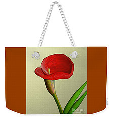 Single Pose Weekender Tote Bag by Rand Herron