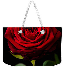 Single Rose Weekender Tote Bag by Miguel Winterpacht