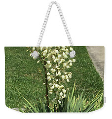 Weekender Tote Bag featuring the photograph Single Strand White Flower Nature Photography Birthday Christmas Holidays Festivals Mom Dad Sister  by Navin Joshi