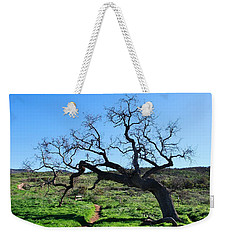 Single Tree Over Narrow Path Weekender Tote Bag
