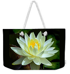 Single Yellow Water Lily Weekender Tote Bag