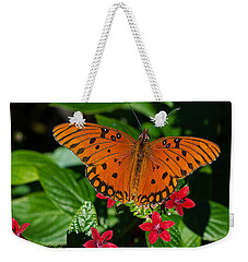 Sipping Gulf Fritillary Weekender Tote Bag by Kenneth Albin
