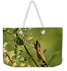 Weekender Tote Bag featuring the photograph Sipping In The Shade by Susan Capuano