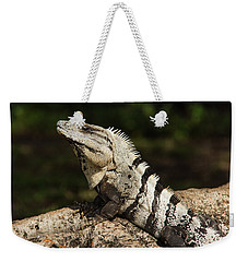 Sir Iguana Mexican Art By Kaylyn Franks Weekender Tote Bag