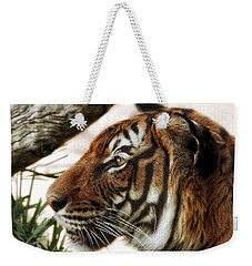 Weekender Tote Bag featuring the photograph Sita Profile by Elaine Malott