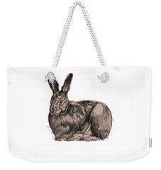 Weekender Tote Bag featuring the drawing Sitting Bunny Jan 2017 by Donna Huntriss