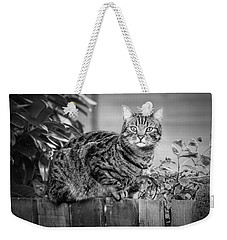 Sitting On The Fence Weekender Tote Bag