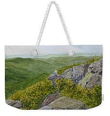 Weekender Tote Bag featuring the painting Sitting Pretty  by Joel Deutsch