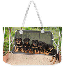 Six Rottweiler Puppies Lined Up On A Swing Weekender Tote Bag by Tracey Harrington-Simpson