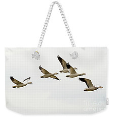Weekender Tote Bag featuring the photograph Six Snowgeese Flying by Mike Dawson