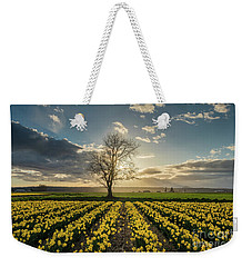Weekender Tote Bag featuring the photograph Skagit Daffodils Lone Tree  by Mike Reid