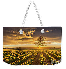 Weekender Tote Bag featuring the photograph Skagit Valley Daffodils Sunset by Mike Reid
