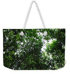 Skagway Green Weekender Tote Bag