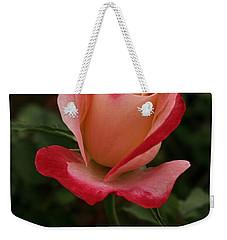 Skc 0435 Nature's Color Shading Weekender Tote Bag by Sunil Kapadia