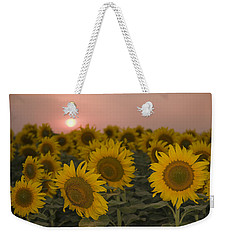 Skn 2178 The Sunflowers At Sunset  Weekender Tote Bag by Sunil Kapadia