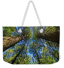 Weekender Tote Bag featuring the photograph Skyward by Gary Lengyel