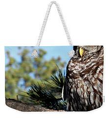 Sleeping Barred Owl Weekender Tote Bag