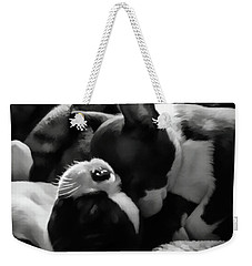 Sleeping Beauties - Boston Terriers Weekender Tote Bag by Jordan Blackstone