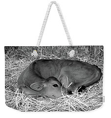 Sleeping Calf Weekender Tote Bag