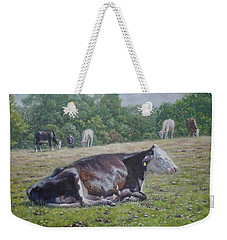 Sleeping Cow On Grass On Sunny Day Weekender Tote Bag