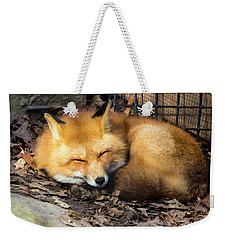 Sleeping Fox Weekender Tote Bag by David Stasiak