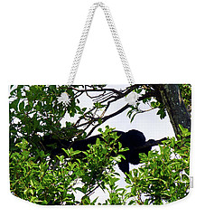 Weekender Tote Bag featuring the photograph Sleeping Monkey by Francesca Mackenney