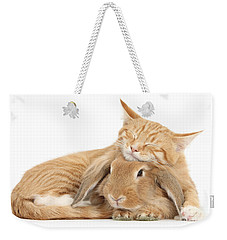 Sleeping On Bun Weekender Tote Bag