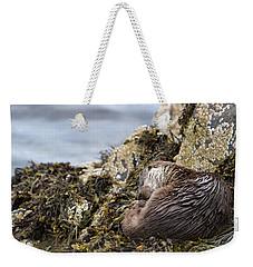 Sleeping Otter Weekender Tote Bag