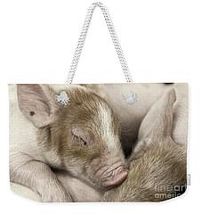 Sleeping Piglet Weekender Tote Bag