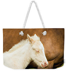 Sleepy Baby Horse Weekender Tote Bag