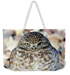 Sleepy Burrowing Owl Weekender Tote Bag