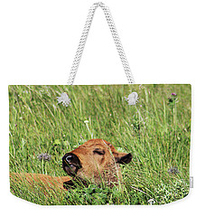 Sleepy Calf Weekender Tote Bag by Alyce Taylor