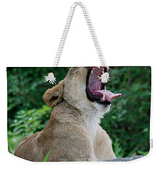 Weekender Tote Bag featuring the photograph Sleepy Lion by Richard Bryce and Family