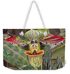 Weekender Tote Bag featuring the painting Slipper Foot Aladdin by Mindy Newman