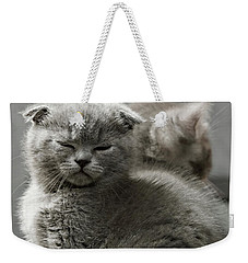 Slumbering Cat Weekender Tote Bag