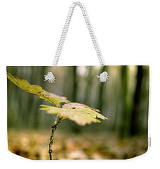 Small Branch With Yellow Leafs Close-up Weekender Tote Bag by Vlad Baciu